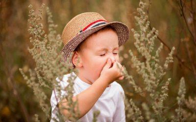 Infekcje wirusowe i alergia w dobie COVID-19