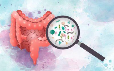 Badanie moczu w kierunku DYSBIOZY – co mówi o zdrowiu jelit?